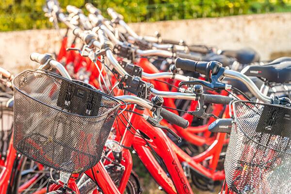 Activités à vélo